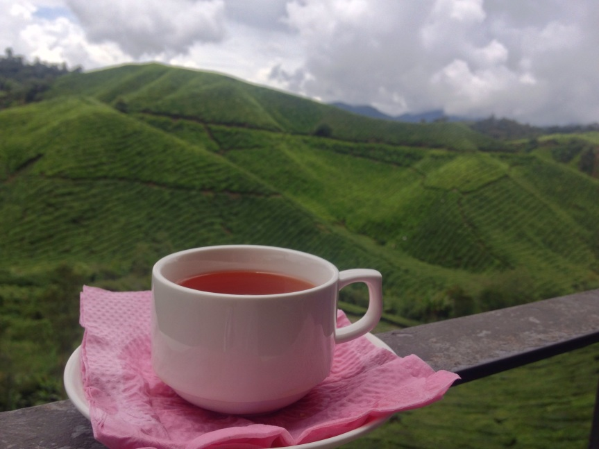 The BOH Tea plantation