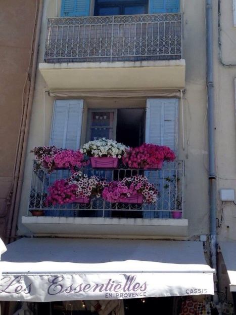 Window boxes in Cassis