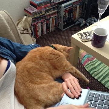 Peanut helping me work