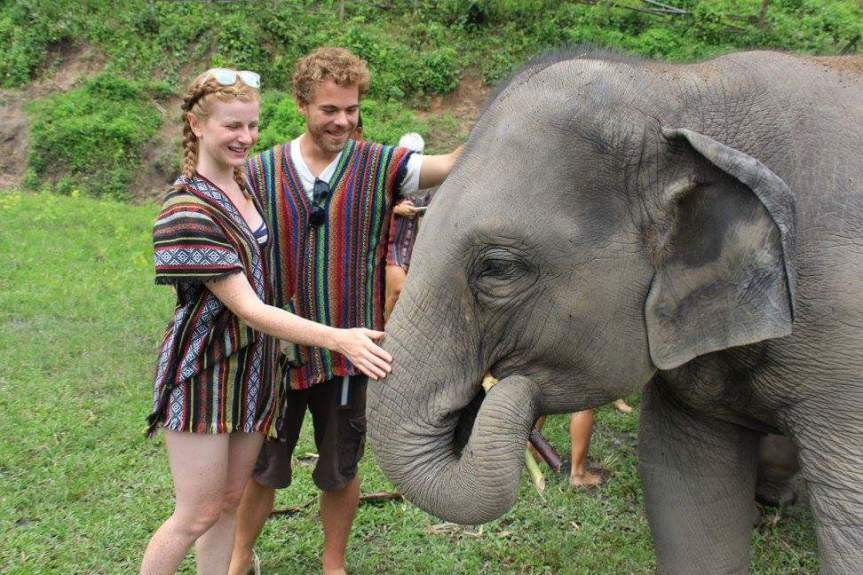 The Elephant Jungle Sanctuary – caring for elephants, not riding them!