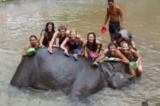 bathing-with-elephant